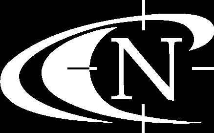 NPY logo